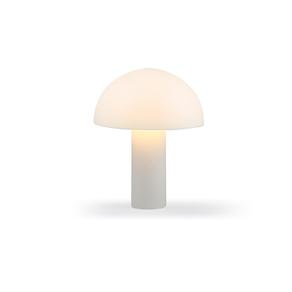 Lámpara fong