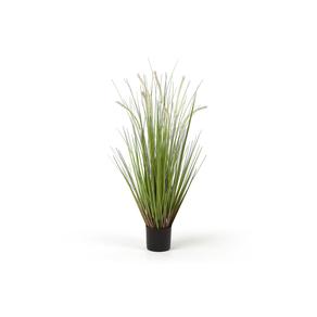 Cañavera artificial plant